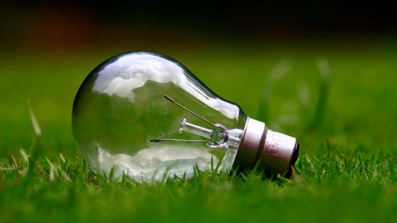 Risultati immagini per lampadine alogene
